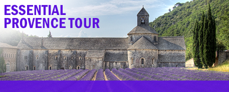 Essential Provence Guide